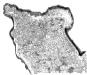 cotentin-gris-300x258.jpg