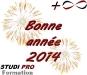 studi-pro-formation-voeux-2014.jpg